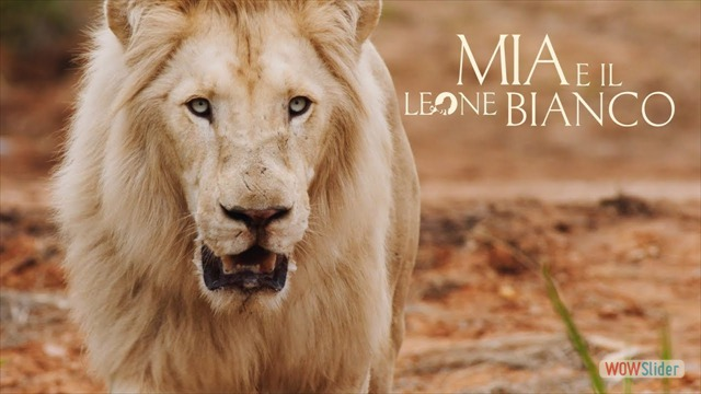 mia e il leone